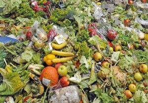 How the packaging industry can minimise food waste article image