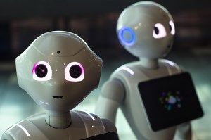 Queensland to invest $50m in AI and robotics innovation article image