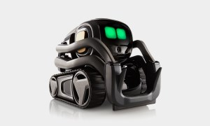 Need a pal? Vector the mini-bot will brighten your day article image